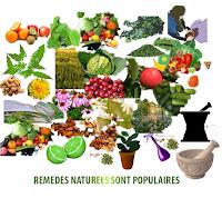 Préparation des remèdes naturels