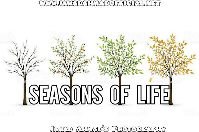 The Seasons of Life | Never Judge Too Quick