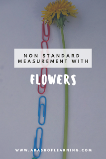 Measurement with Flowers (Preschool Math)