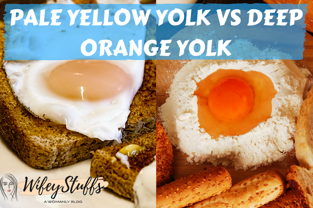 egg yolk,egg,egg yolk (ingredient),yolk,egg yolks,egg yolk recipes,egg (food),egg yolks bad,separate egg yolk,egg yolk separator,cured egg yolks,curing egg yolks,salted egg yolk recipe,egg yolk is healthy or not,egg white,eggs,dark egg yolk,egg yolk color,egg yolk puree,cured egg yolk,salted egg yolk,curing egg yolk,egg yolk for fry,shrimp egg yolk,myth of egg yolk,yolks,cure egg yolks
