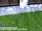 Tutorial cara membuat rumput Realistis di Blender 3D