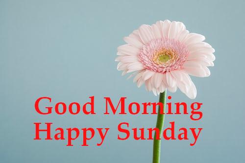 Gaad Morning Happy Sunday