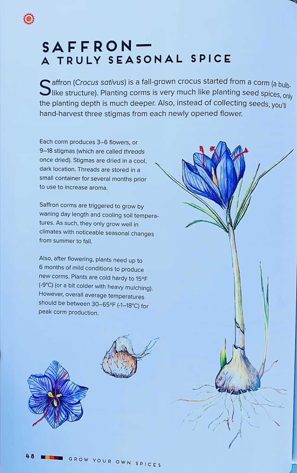 How to grow Saffron page in book