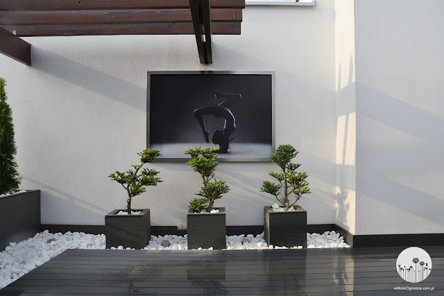 nowoczesny ogrod na dachu