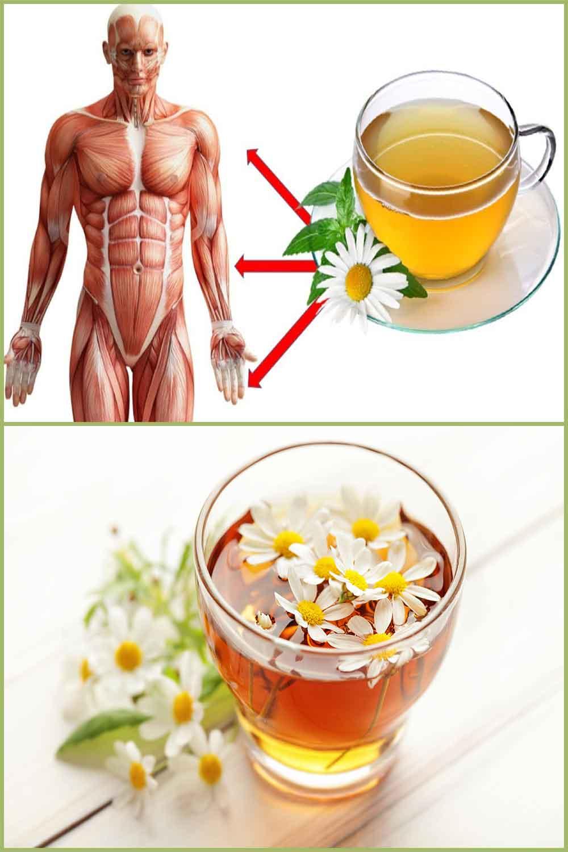 Bienfaits pour la santé du thé et de l'huile de camomille