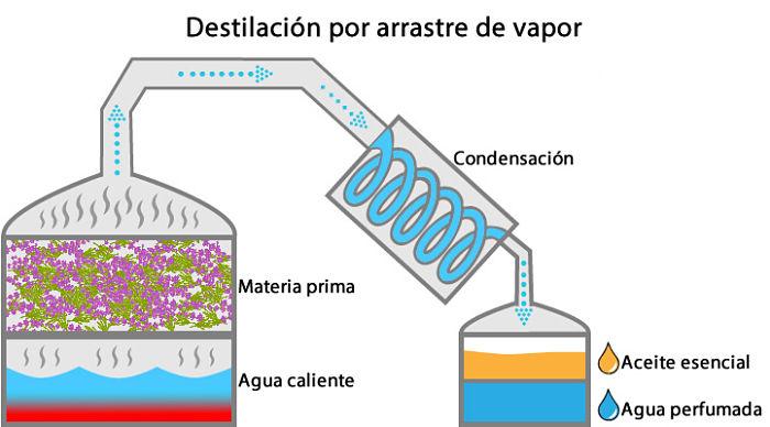 Destilación por arrastre mediante vapor de agua