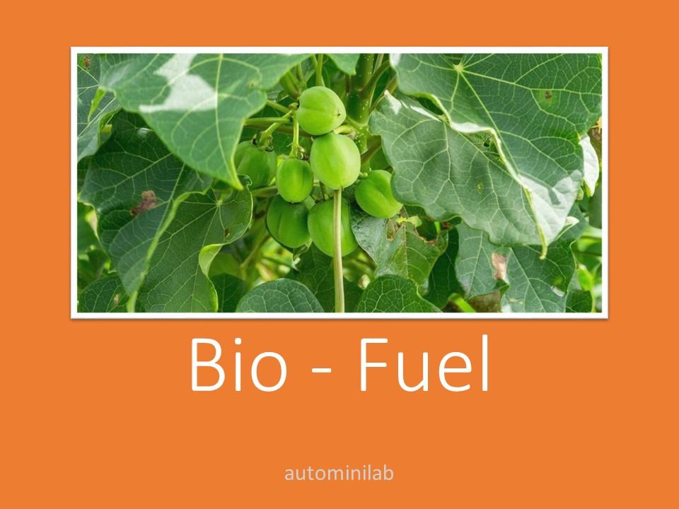 teknologi penyediaan energi alternatif dengan menggunakan sumber daya alam yang dapat diperbaharui berupa tumbuh-tumbuhan disebut