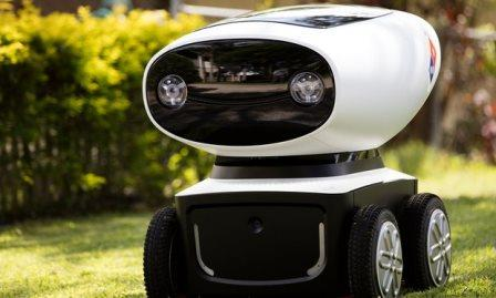 Dominos Robot who will serve pizza as delivery boy
