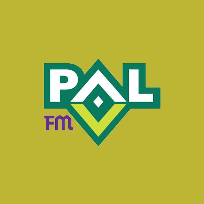 PAL FM Top 40 Liste Ocak 2021 Tek Link indir