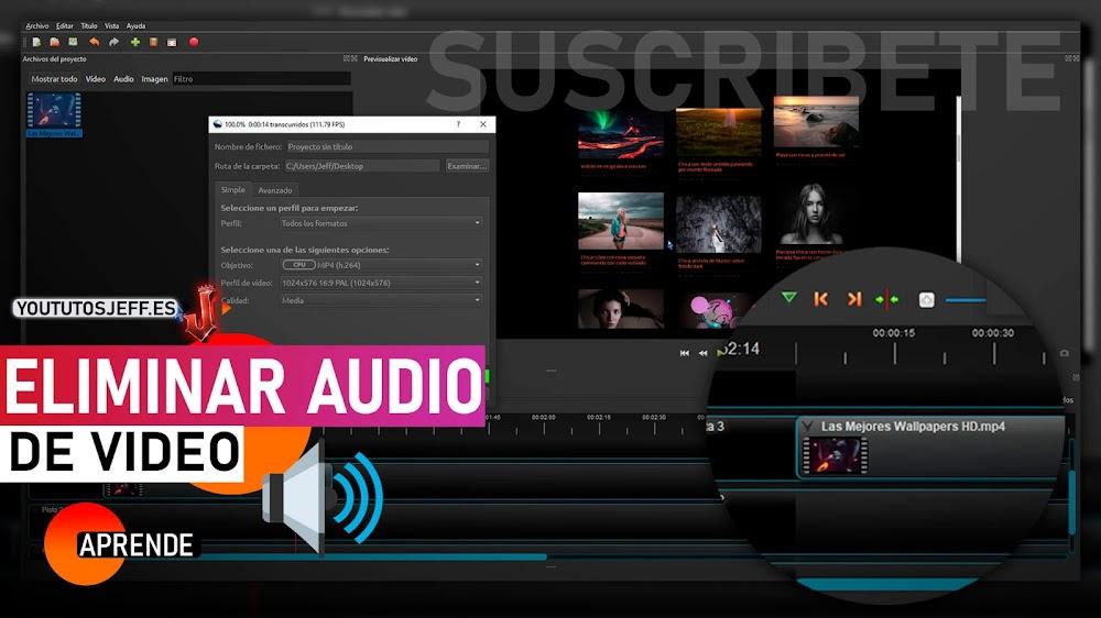 Como Eliminar Audio de un Vídeo FACIL Y RAPIDO