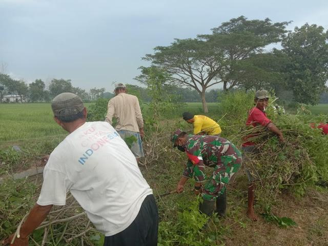 Bersihkan Akses Jalan Pertanian Babinsa Cawas Bersama Warga adakan Kerja Bakti