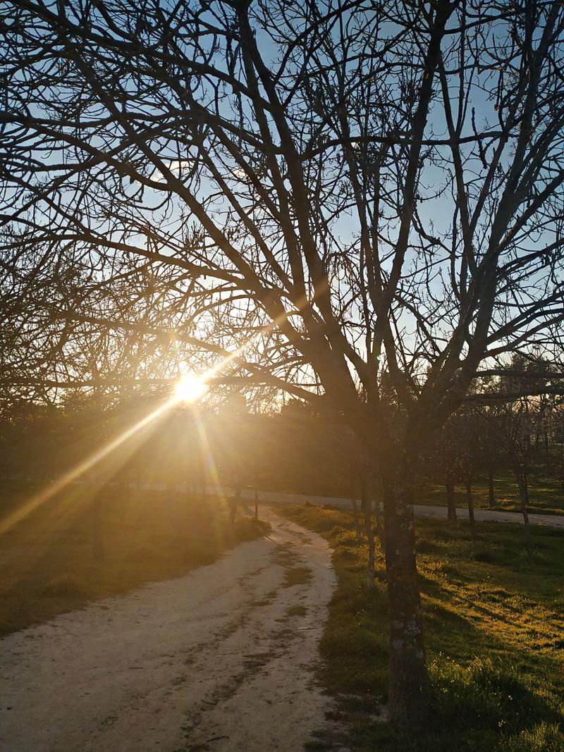 LIFESTYLE MARZO: Parque de Valdebernardo (Madrid)