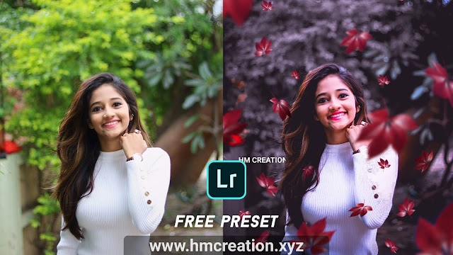 Download free Moody portrait - Lightroom Mobile presets and png