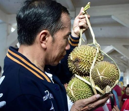 Ketua Harian DPW PAN Sultra Dukung Jokowi