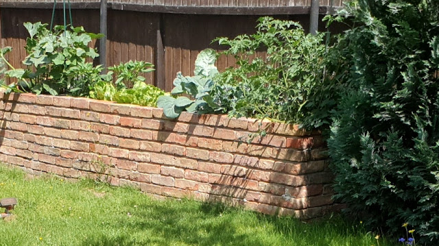 gemauertes Hochbeet bepflanzt