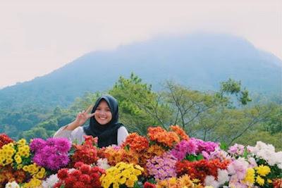 Harga Tiket Batu Flower Garden