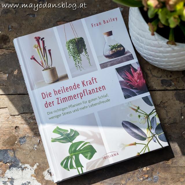 Pflegeleichge Zimmerpflanzen für jedermann