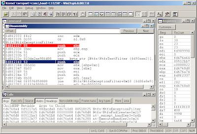 Windbg screenshot