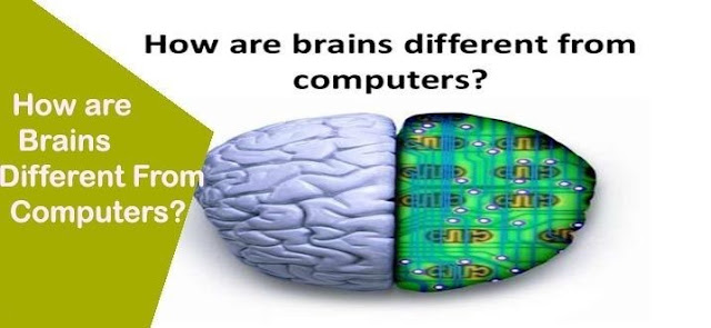 How are Brain different from Computers