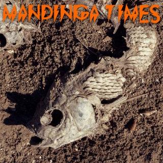 Rita Indiana - Mandinga Times Music Album Reviews