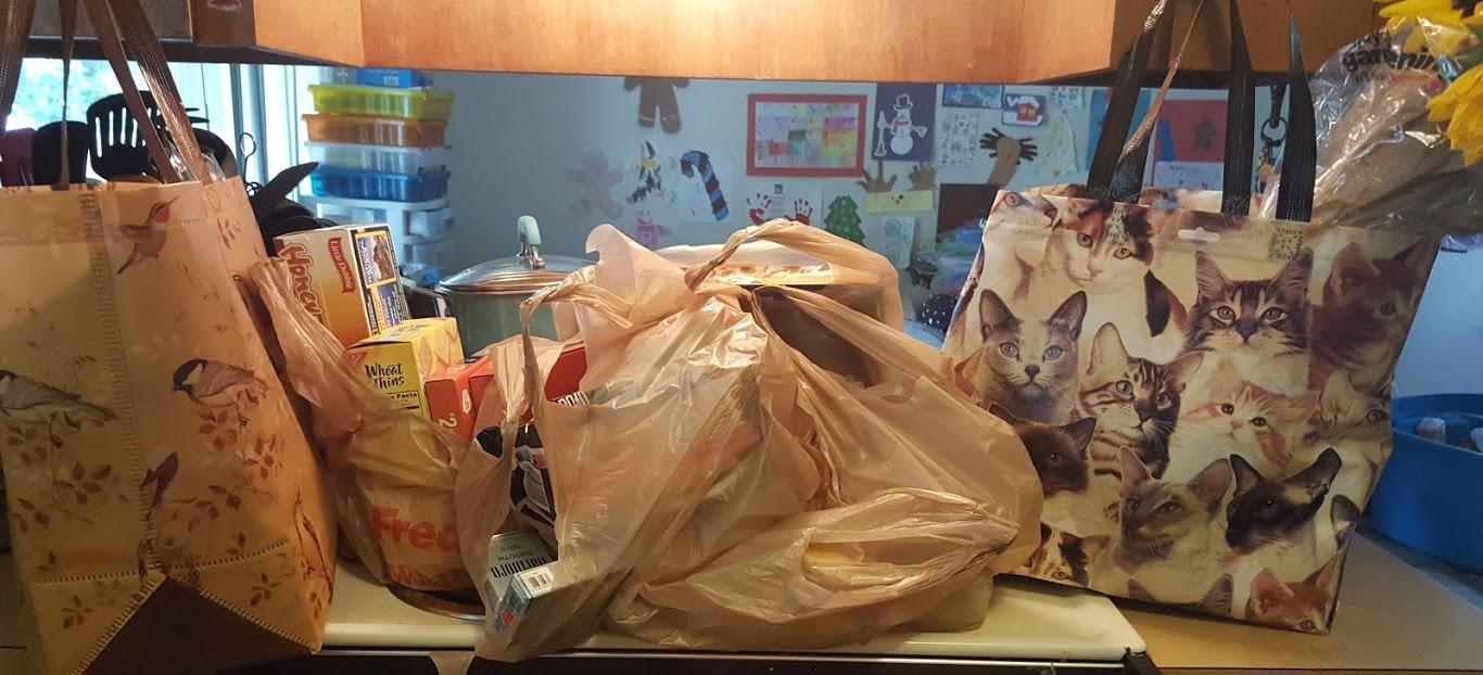 Mom\'s bags of tricks : Fred Meyer Haul- 2 trips in 1 haul