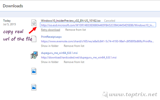 copy-real-url-of-downloading-file