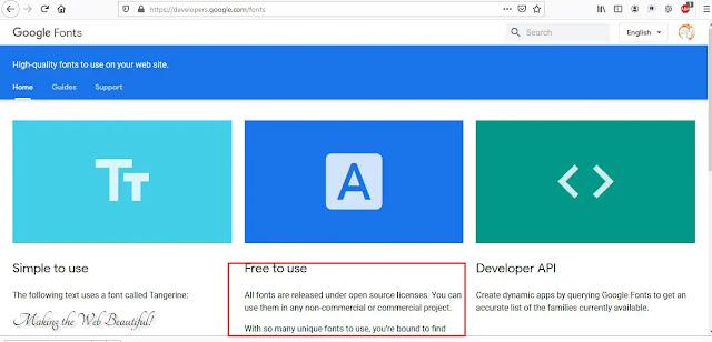 licensi google font