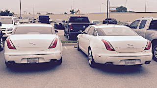 Two white Jags in a parking lot.