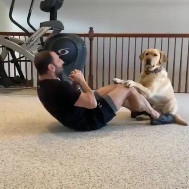 Dog as Gym Coach