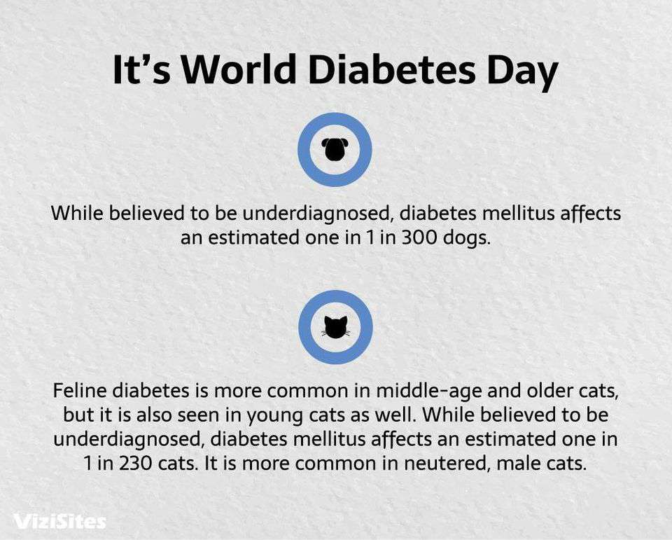 World Diabetes Day Wishes Lovely Pics