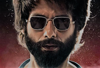 Kabir Singh Box Office Collection Day 15 !!