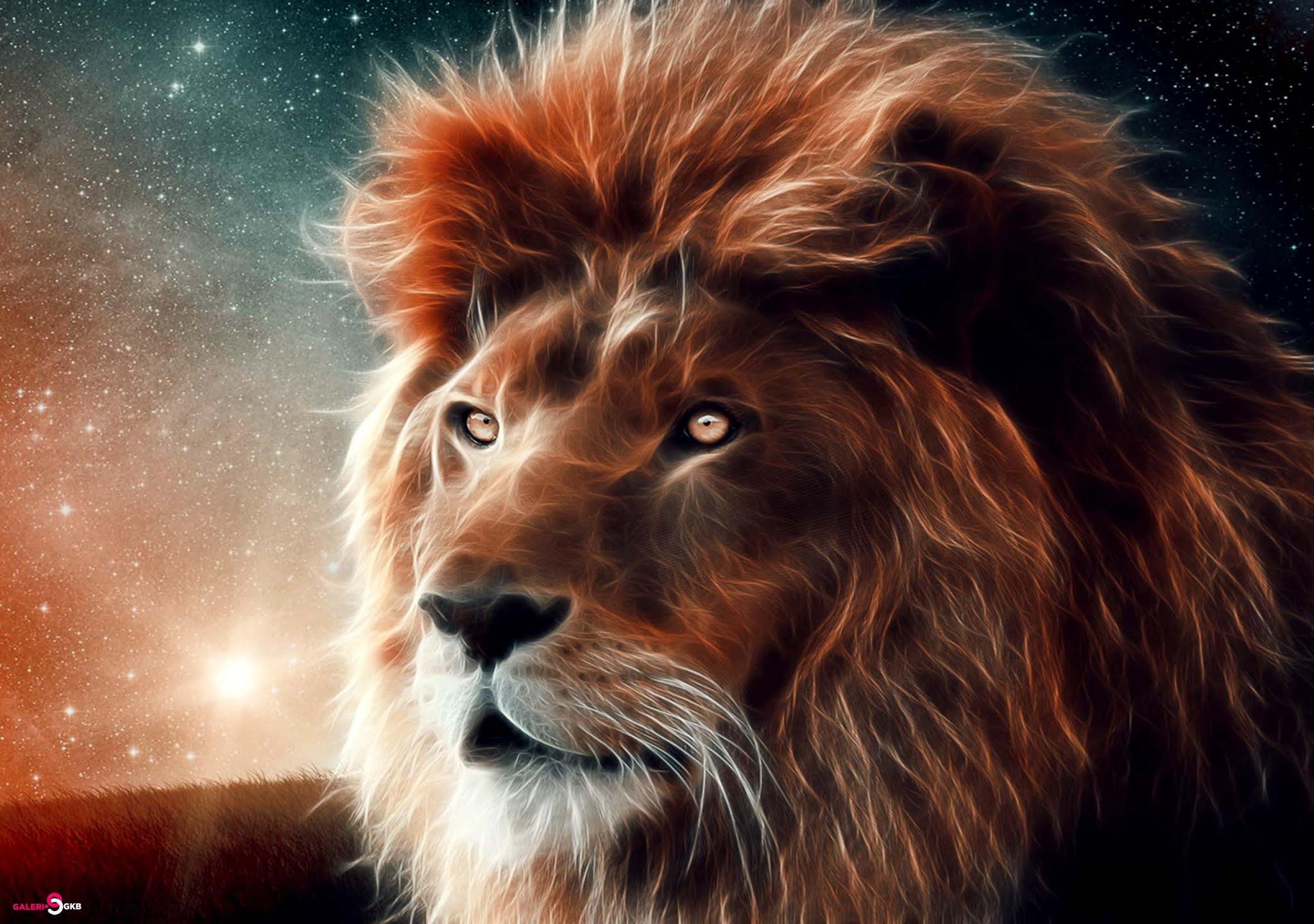 14 Lion Ultra HD Wallpaper For Computers Desktop, Lion Background Image PC