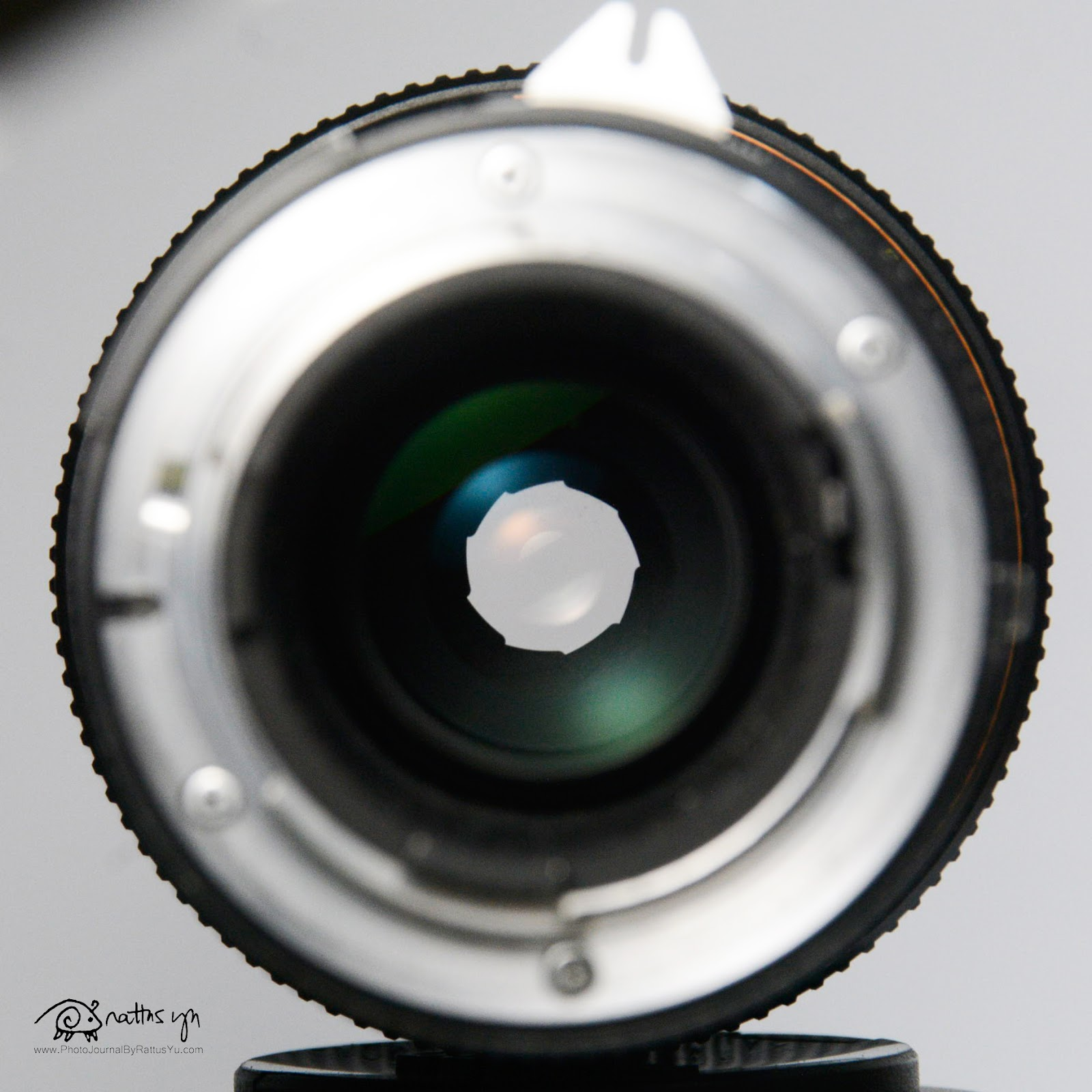 Zoom-Nikkor 100-300mm f/5.6 Macro