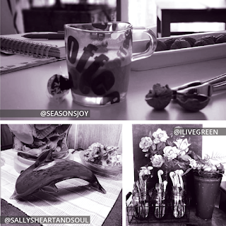 Collage of three photos. Top photo taken by @SeasonsJoy is a table with a planner, walnuts in a dish, a nutcracker with a shelled walnut, a truffle, and a coffee mug. Bottom row has two photos: a table with a glass dolphin, a jar of shells, and a dish with a shell taken by @SallysHeartAndSoul; a table on top of which are a wire crate with three glass jars containing a variety of sizes, a flowering potted plant, and a painting of a flowering potted plant taken by @ILiveGreen.