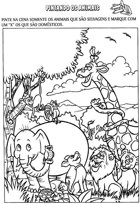 Desenhos Para Imprimir De Animais Selvagens