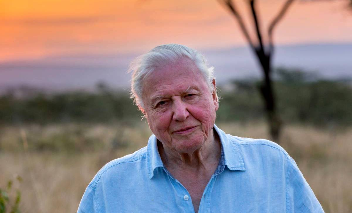 David Attenborough Kakek 94 Tahun 1 Juta Follower Instagram Tercepat (instagram.com)