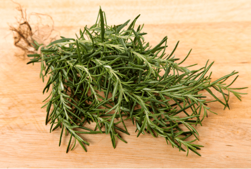 Benefits and harm of rosemary