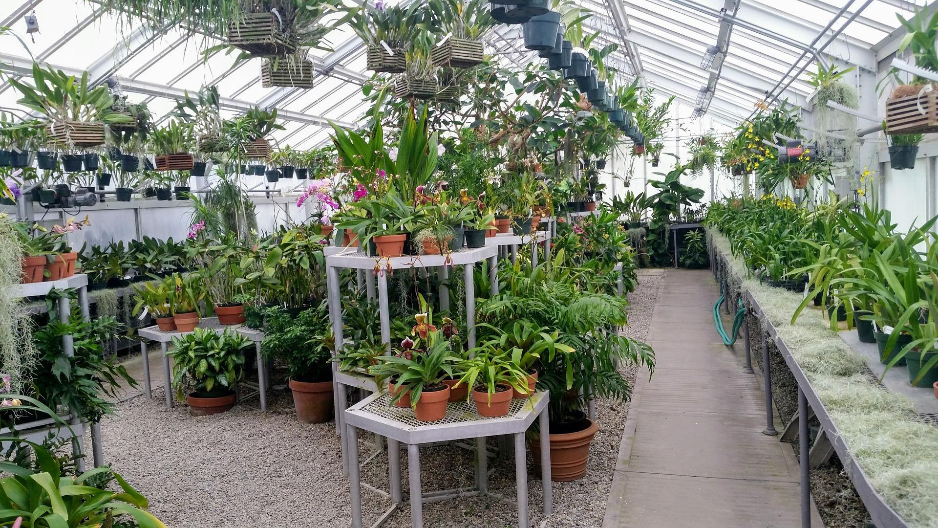 Setup A Simple Indoor Garden