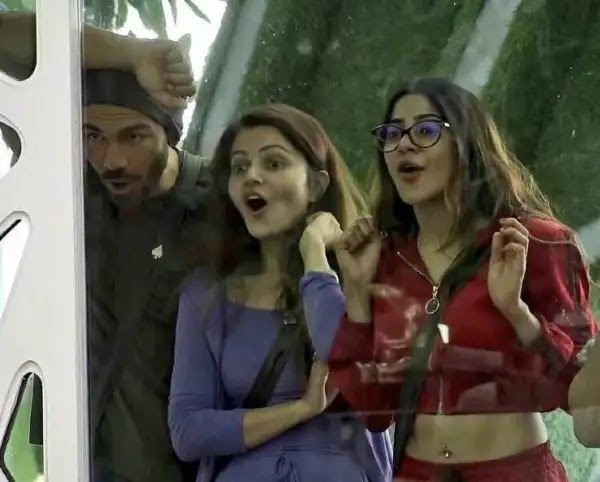 'Nikki aap Rubina Ki Puppet ban gaye ho', Jasmin slams Nikki for betraying her team