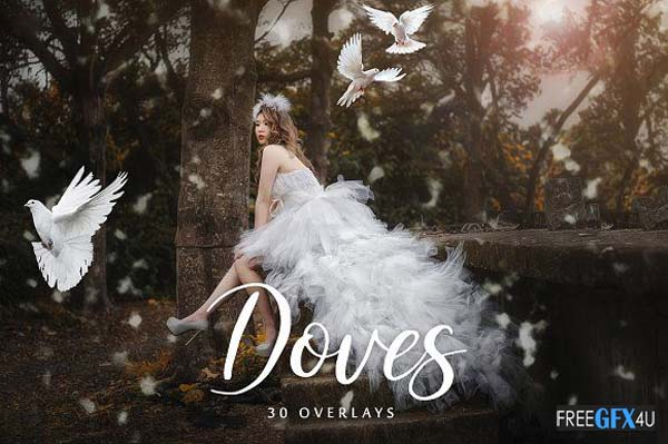 20 Doves Overlays