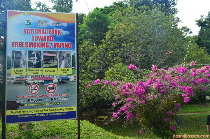 Pengalaman Pertama Bercuti ke Taman Negara Pahang, Trekking & Mandi Manda di Lubuk Simpon