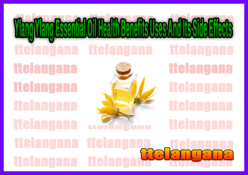 Ylang Ylang Essential Oil Health Benefits Uses And Its Side Effects