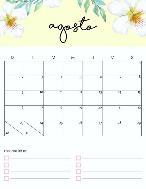 Calendario colorido 2020 de agosto gratis