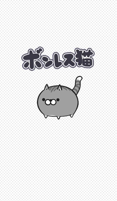 -Plump cat-