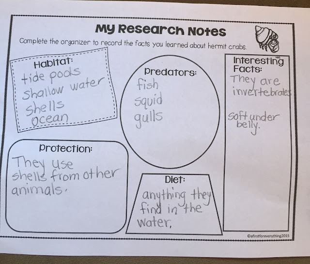 Close reading tide pools. Hermit crab research and craftivity.
