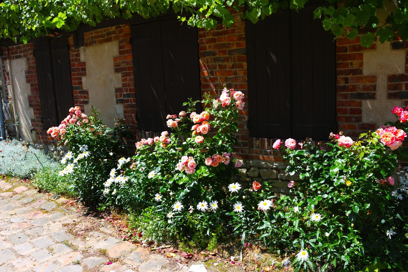 Photography, Countryside, France, Landscape, Flowers, Style