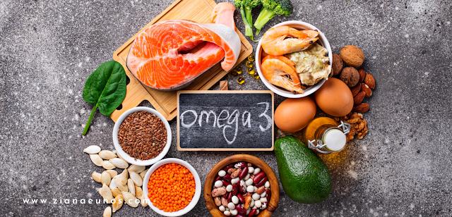 Makanan Omega 3 untuk kurus