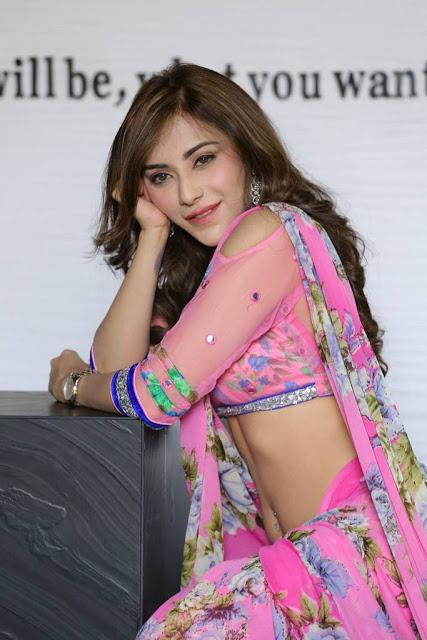 telugu actress Angela Krislinzki  cleavage,navel pics in saree