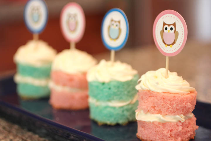 Astounding Owl Cupcake Toppers Free Printable Repeat Crafter Me Personalised Birthday Cards Sponlily Jamesorg