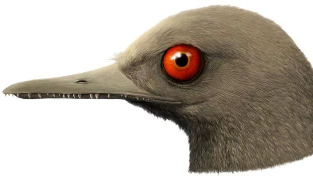 Encuentran en Myanmar un diminuto dinosaurio fosilizado en ámbar y esto parece 'Jurassic Park'